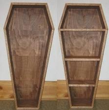 Coffin bookshelf